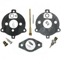 Kit de reparatie carburator Briggs & Stratton 295938