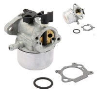 Carburator Briggs & Stratton 790978