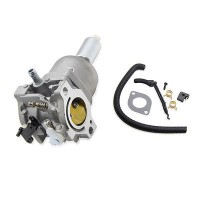 Carburator Briggs & Stratton 794572