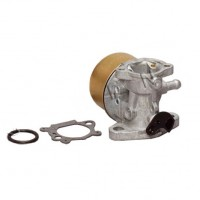 Carburator Briggs & Stratton 498170