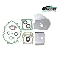 Set garnituri MTD OHV 500 (751-10409)