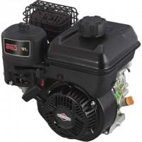 Motor Briggs & Stratton 550 Series
